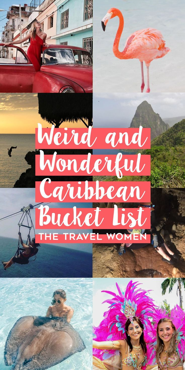 The Ultimate Caribbean Bucket List. After enjoying beautiful beaches and resort amenities, some of the best things to do in the Caribbean can be a bit weird but oh so wonderful! From swimming with pigs to stingrays, here is our Caribbean bucket list. | The Travel Women #caribbean #bucketlist #travel