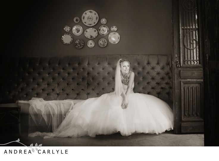 Andrea Carlyle, Morrells wedding