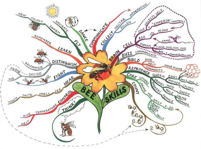 Bee Skills Mind Map Created By Tony Buzan The Bee Skills Mind Map Will Help