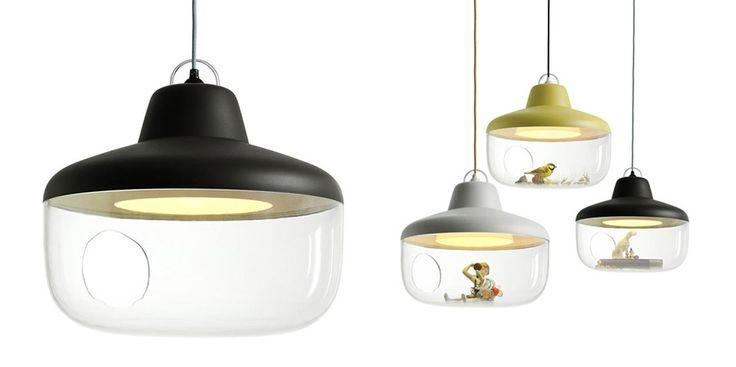 Lámpara de techo con receptáculo de cristal debajo para colocar objetos.