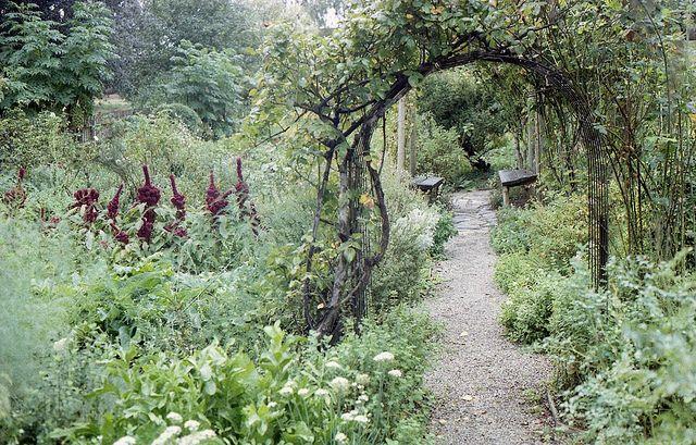 Heide II Kitchen Gardens