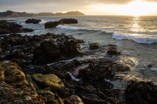 Isla Santa María 3