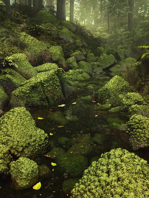 .: Enchanted Forests, Green, Fairies Gardens, Peace, Rivers, Natural, Rocks, Pools, Fairies Tales