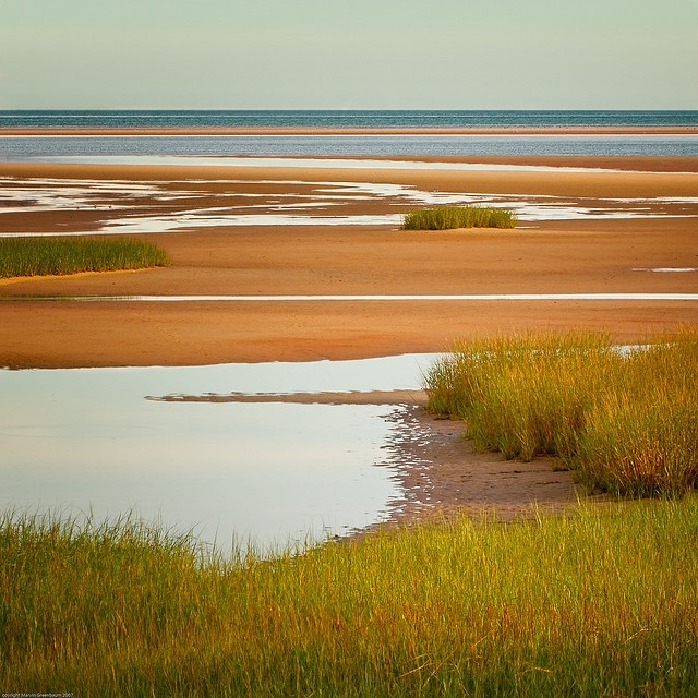 Paine's creek flats- the brewster flats are some of the widest in the country at low tide