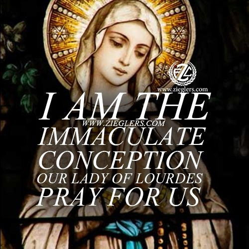 I am the Immaculate Conception! Happy Feast of Our Lady of Lourdes! Pray for us!