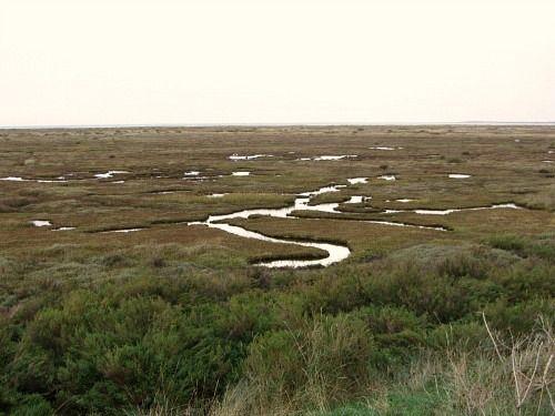Stiffkey Marshes, North Norfolk Coast