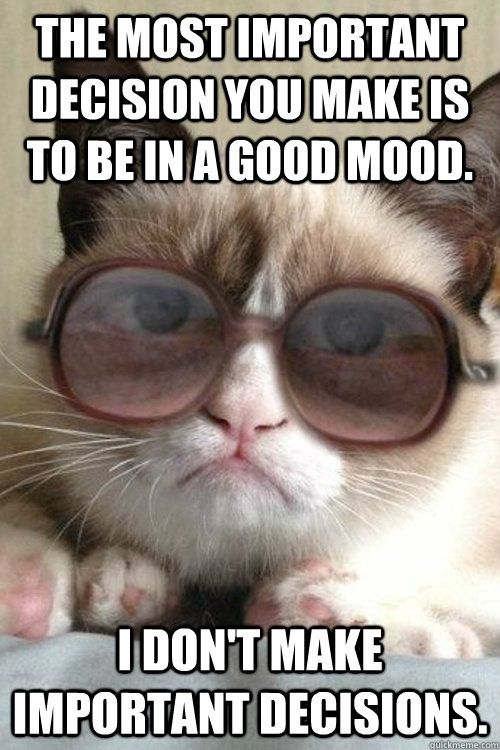 The most important decision you make is to be in a good mood....I don't make important decisions.....Leadership Theory with Grumpy Cat