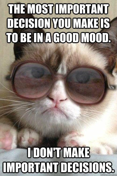 Grumpy Cat Grumpy Cat Meme Grumpy Cat Humor Grumpy Cat