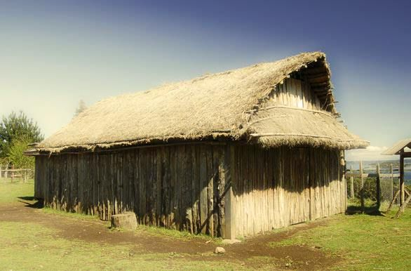 Se estima que las primeras familias se habrían establecido allí hace unos 400 años. Las primeras informaciones sobre los habitantes de la isla se remontan a las crónicas de Luis de León, que tratan sobre las escaramuzas que Puelches y Huilliches protagonizaron contra a los españoles entre 1575 y 1585.  Actualmente, está habitada por cerca de 900 personas, principalmente de ascendencia Mapuche y Huilliche, que poseen un alto grado de consanguineidad.