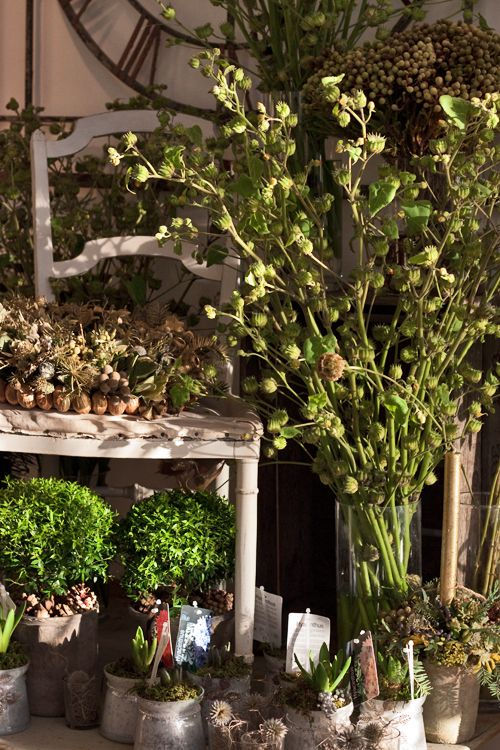 Visiting Zita Elze's beautiful florist shop in Kew : Part 1 | Flowerona
