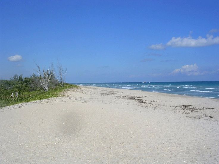 Port St. Lucie, FL : lonely beach 10 min drive from port st lucie take the dog