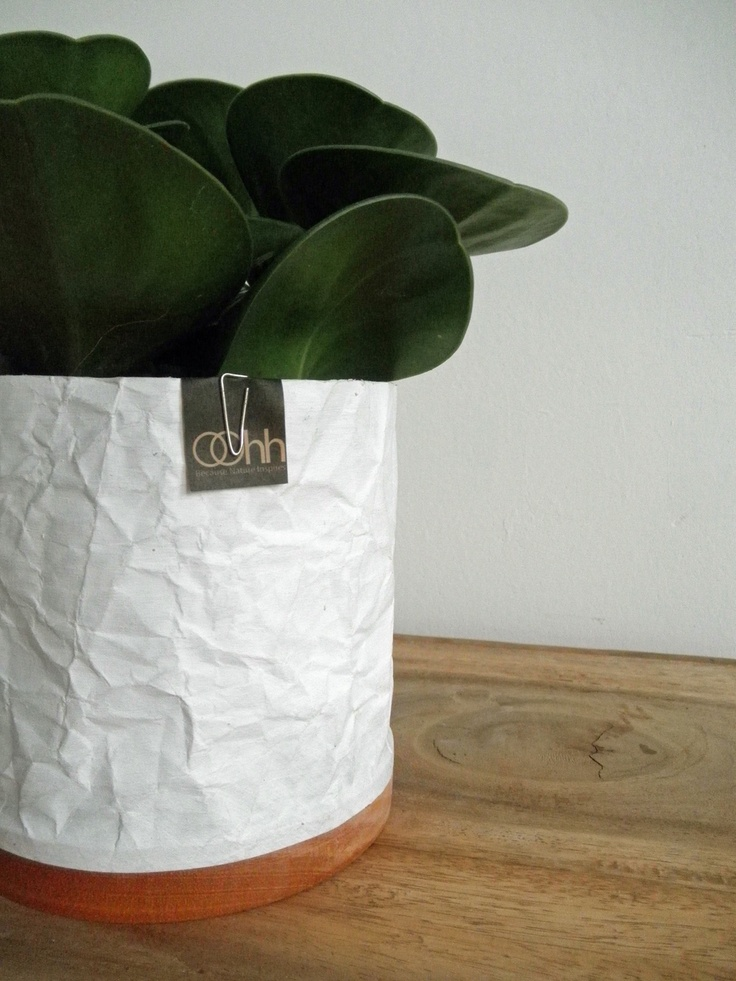 OOhh paper pots at Accessorize your Home