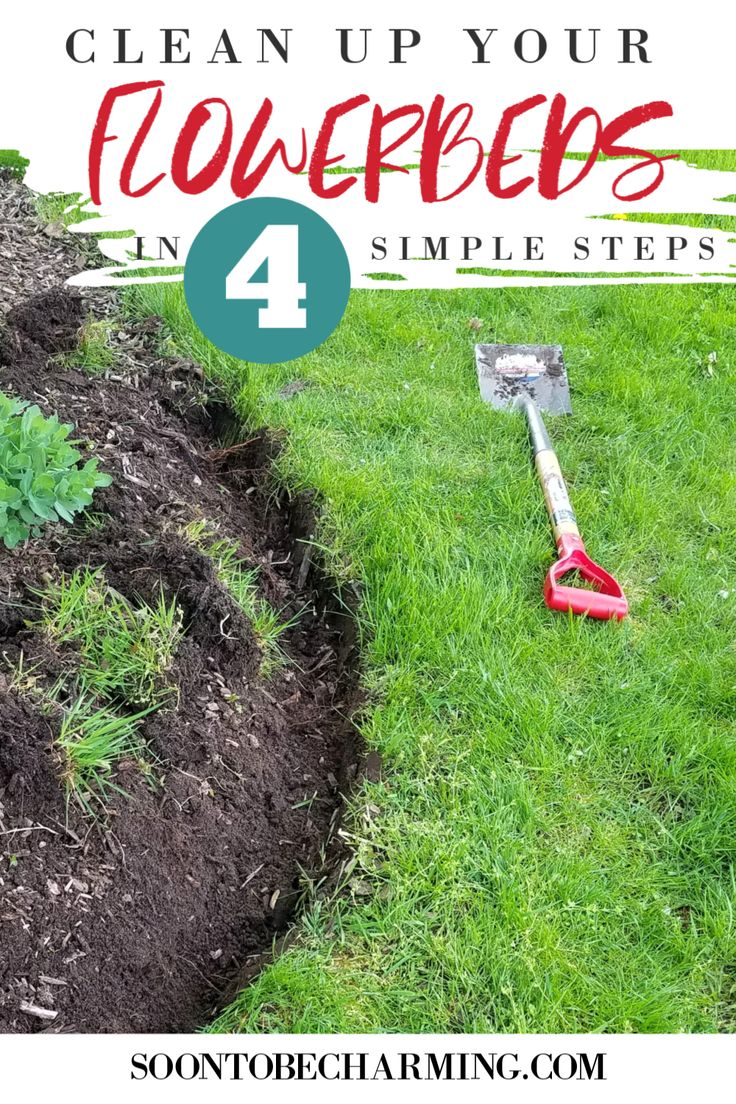 Clean Up Your Flowerbeds In 4 Simple Steps Soon To Be Charming Flower Beds Landscape Edging Deck Landscaping Diy backyard clean up