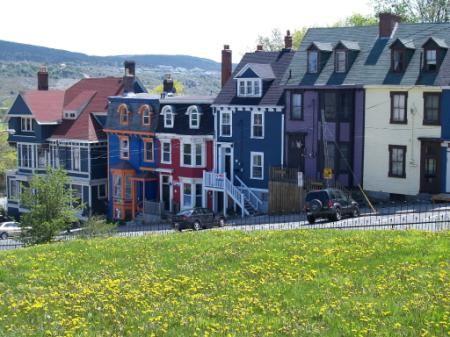 Bursts of delightful local colour amid the fog and rain of Newfoundland