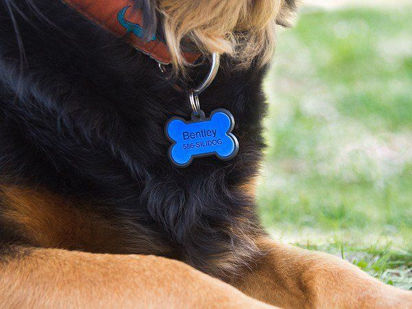 Silicone Pet Tag by SiliDog