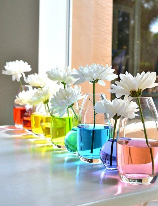 Fun project for kids - put food coloring in water with white flowers - dye should tint the white flower