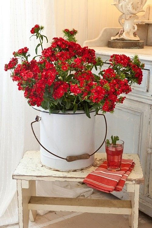 Red Flowers in White Enamelware Bucket