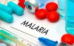 Os 8 Principais Sintomas da Malária