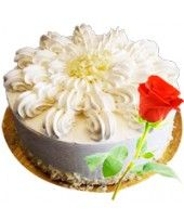 Heavenly Vanilla Cake and Classic Red Rose