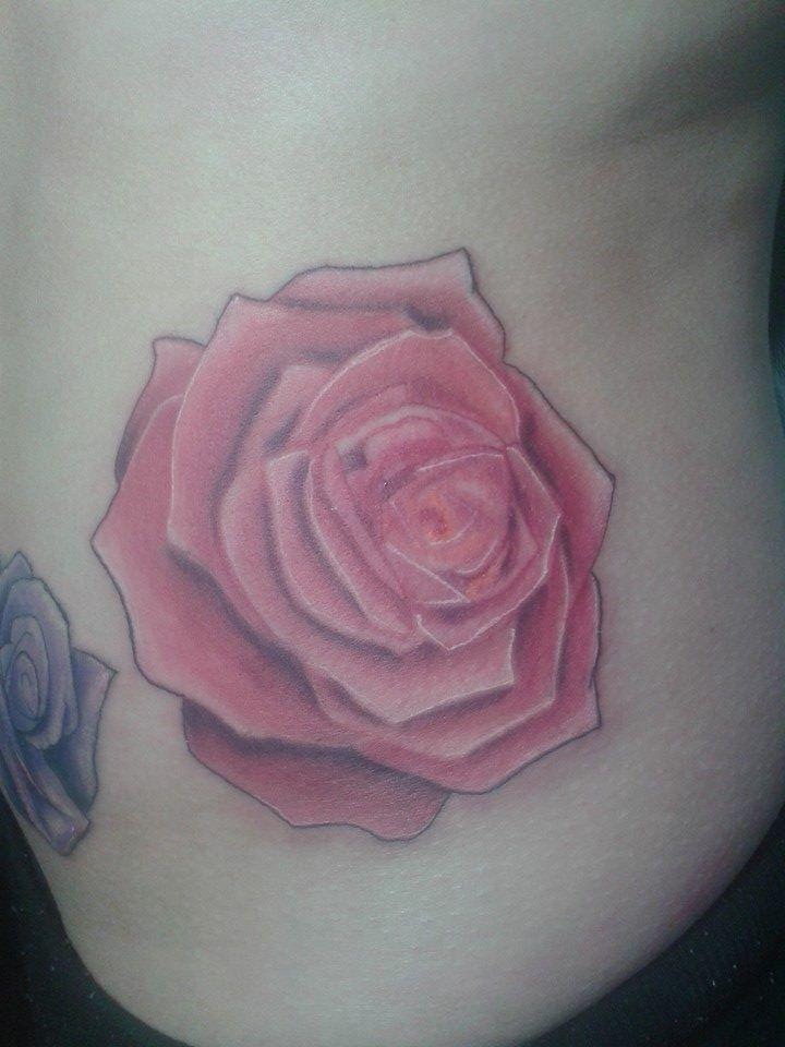 Una rosa de hace mucho rato