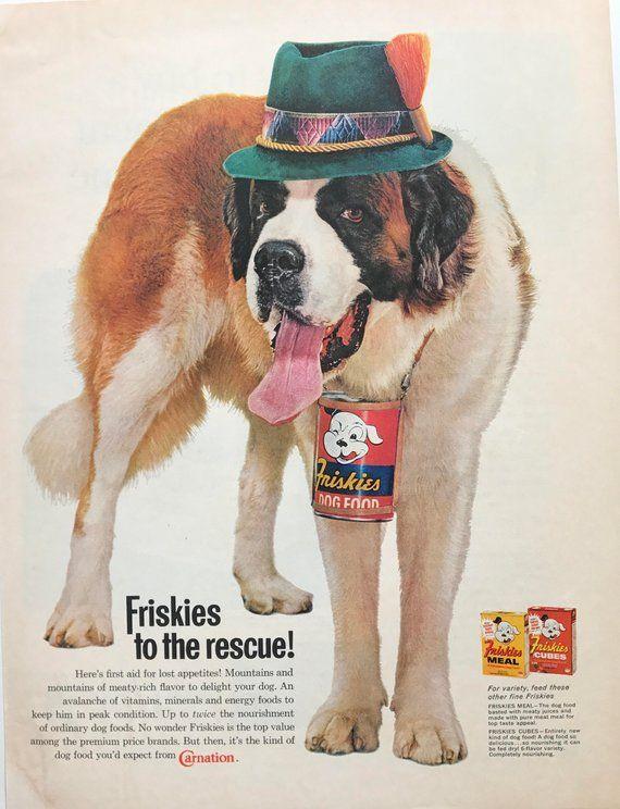 1961 Saint Bernard Friskies Dog Food Advertisement Valentine Gift