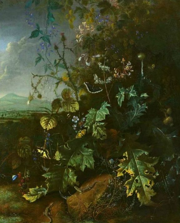 Matthias Withoos (Amersfoort 1621 - 1703 Hoorn), Forest Still life with butterflies and lizards. Oil on canvas. 84,5 x 68,5 cm.