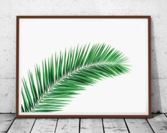 Le 25 migliori idee su bagno tropicale su pinterest design tropicale - Bagno 90 minuto ...