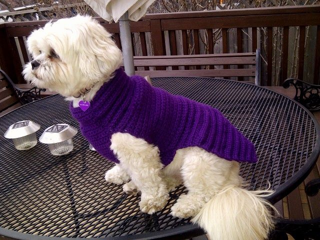 TRICO y CROCHET-madona-mía: Trajes para perros-(cachorro) modelo en croche