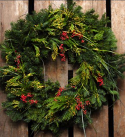 find real minnesota grown christmas trees from hackers tree farm nursery and greenhouse in sleepy - Christmas Tree Nursery