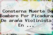 http://tecnoautos.com/wp-content/uploads/imagenes/tendencias/thumbs/consterna-muerte-de-bombero-por-picadura-de-arana-violinista-en.jpg araña violinista. Consterna muerte de bombero por picadura de araña violinista en ..., Enlaces, Imágenes, Videos y Tweets - http://tecnoautos.com/actualidad/arana-violinista-consterna-muerte-de-bombero-por-picadura-de-arana-violinista-en/