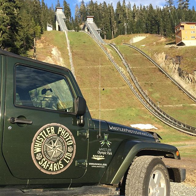 Ski jump landing slopes make for good spring feeding for the Bears in @whistlerolympicpark #whistlerphotosafaris #bearviewing #safaris #littlethingswhistler #blackbears
