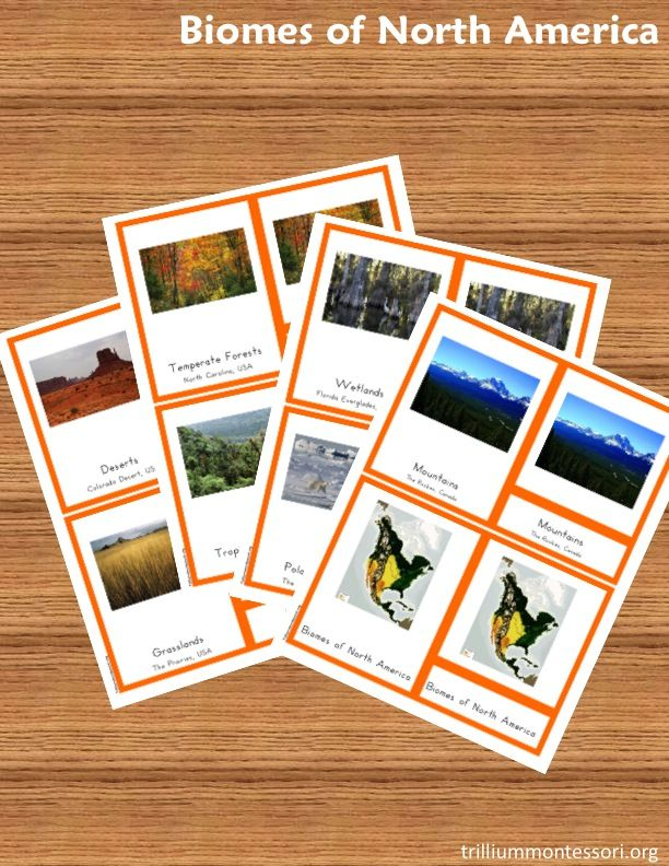 Free Montessori style Biomes of North America 3-part card printables (instant download for blog subscribers)