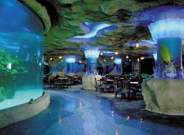 The Aquarium At Kemah Boardwalk In Tx Great Food And An Unbelievable View Restaurants Pinterest Aquariums