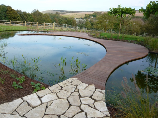 Curved Path From Deck To Pool Not Over Water Guess The Pool Would Need To Be Decked Around The