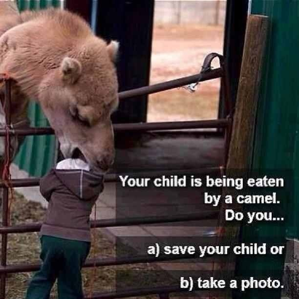 What would you do?  I seriously just laughed out loud at this.