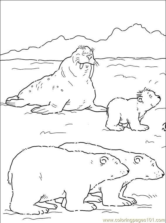 Arctic Tundra Drawing