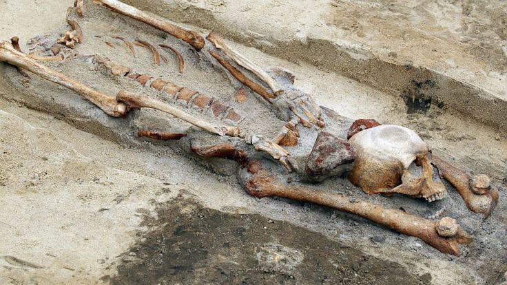 'Vampire Cemetery' Found in Poland -- 17 skeletons buried with their severed skulls placed between the knees or hands have been uncovered in Poland. The burial practice is how vampires used to be interred according to archaeologists. The bodies date from the 15th or 16th centuries when the fear of vampires was widespread in Eastern Europe.