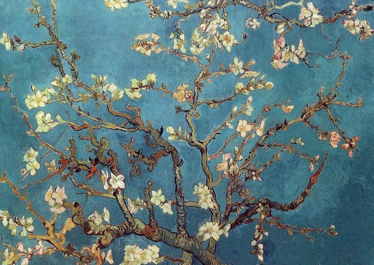 Amendoeiras em Flor, Vincent Van Gogh: Vincent Of Onofrio, Almonds Blossoms, Gogh Paintings, 1890 Vincent, Almonds Trees, Vincent Vans Gogh, Art, Vincent Van Gogh, Branches