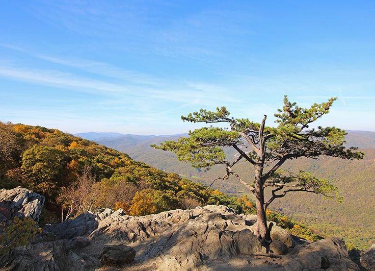 Ravens Roost Overlook on the Blue Ridge Parkway in Virginia
