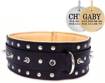 Cuero tachonado Collar de perro marrón cachorro por CollarDirect                                                                                                                                                                                 Más