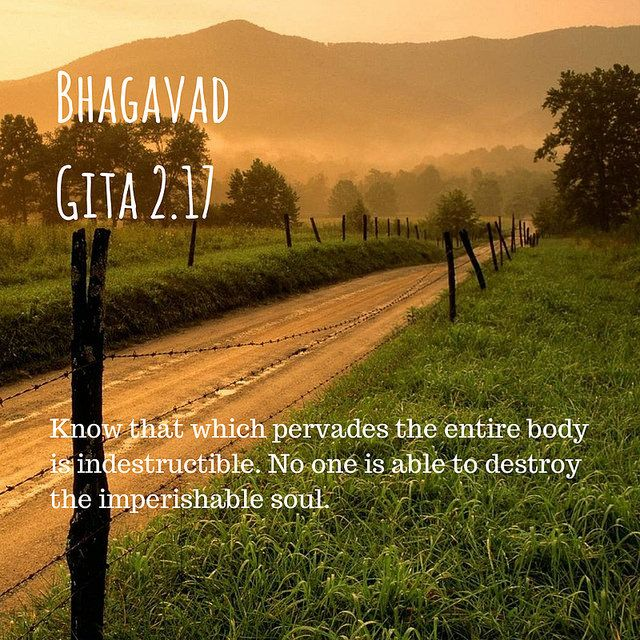 Bhagavad Gita Quotes On Life And Death: Pin By Jagad Guru Siddhaswarupananda Fans On Quotes From