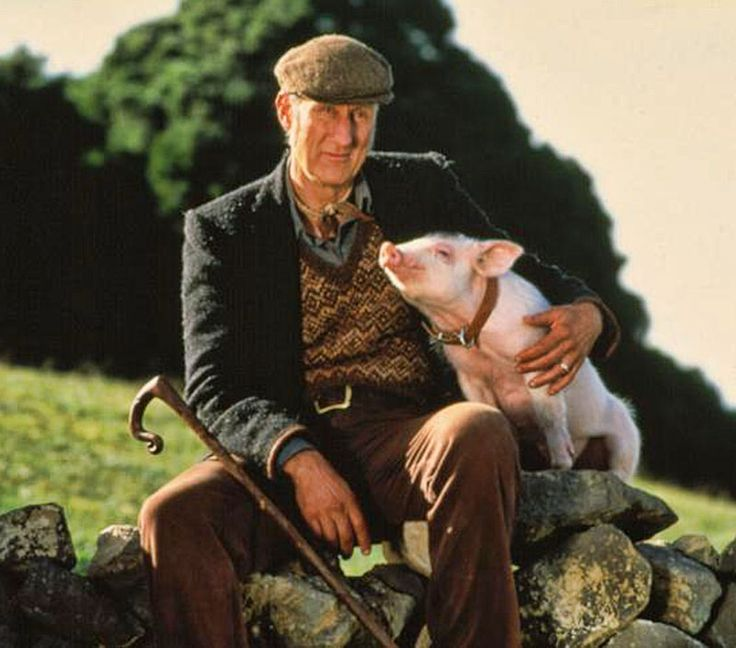 James Cromwell Babe 1995