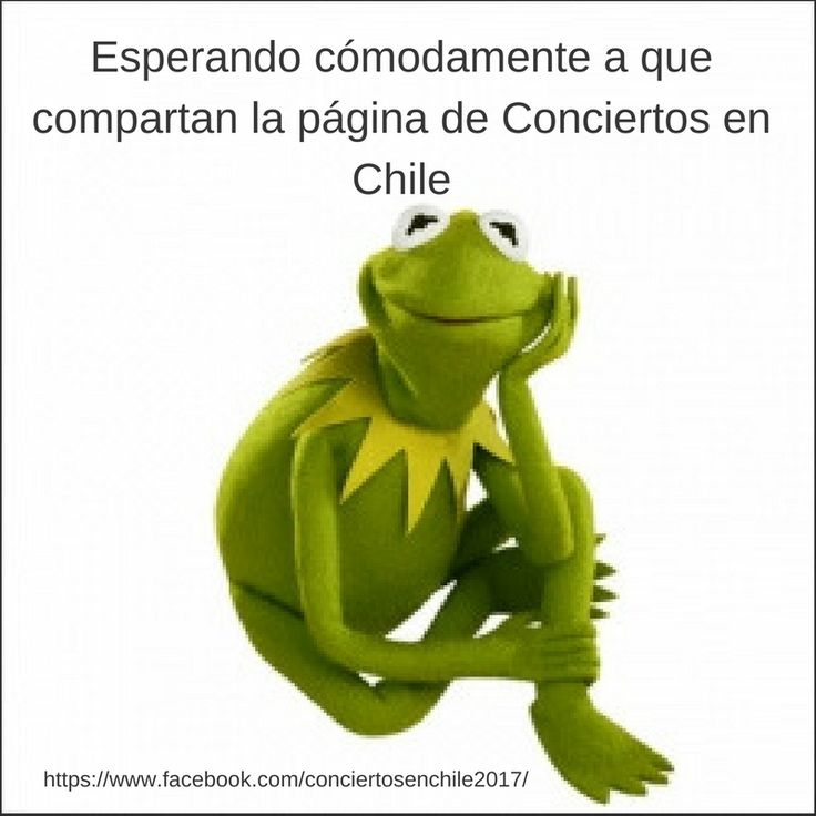 invitación a visitar la página de facebook de Conciertos en Chile