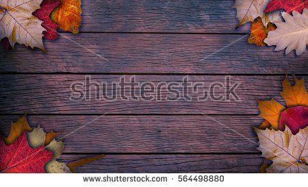 Autumn background with leaf on a wood