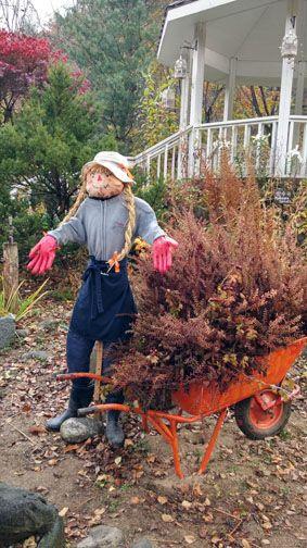 Scarecrow, Fall, Farm Herbnara, Korea