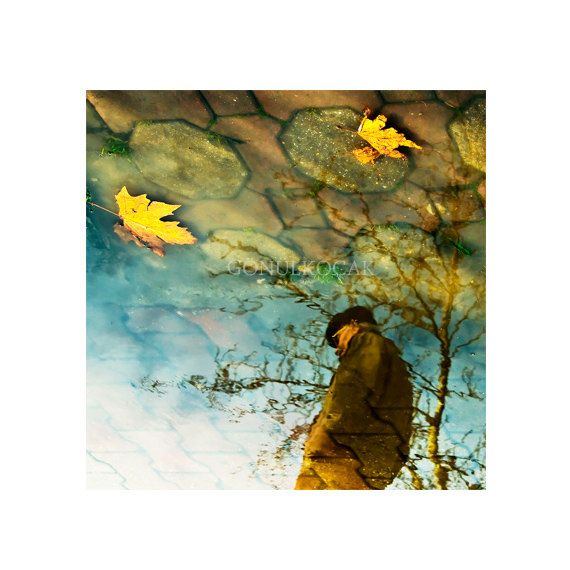 Reflection photography Art photograpy Autumn photography by gonulk, $50.00