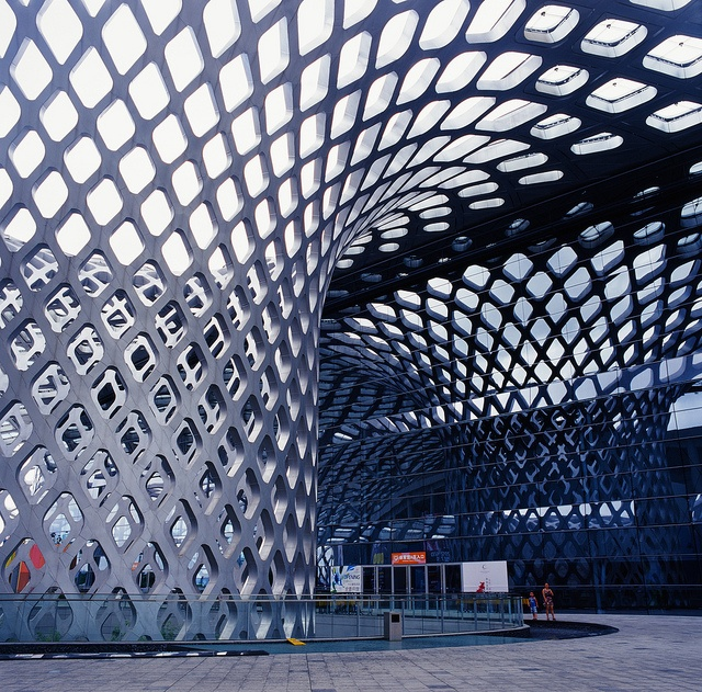 Shenzhen Bay Sports Centre 'Spring Cocoon': Bracing Column by Functionary, via Flickr