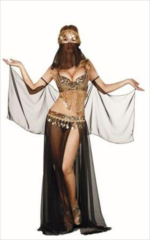 Conversations! adult belly dancer costumes apologise, but