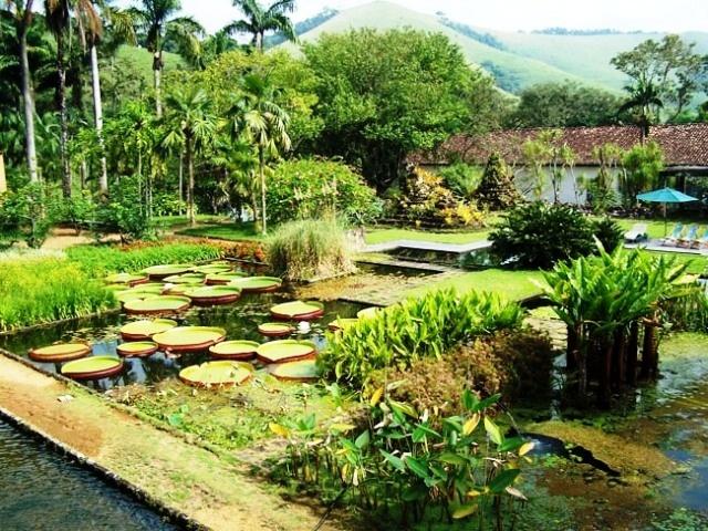 Fazenda Vargem Grande - Burle Marx