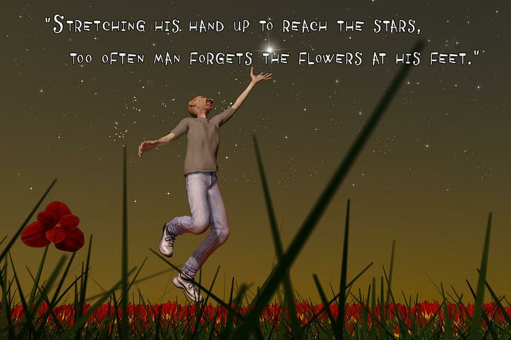 "To Reach The Stars Digital Art  - To Reach The Stars Fine Art Print - Artwork depicting and featuring the quote, ""Stretching his hand up to reach the stars, too often man forgets the flowers at his feet.""  These wise and inspirational words are credited to Jeremy Bentham, a British philosopher."